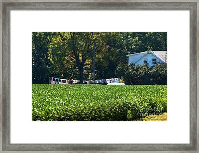 Sheets And Undies Framed Print by Paulette B Wright