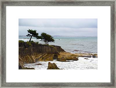 Shell Beach After The Storm II Framed Print by Barbara Snyder