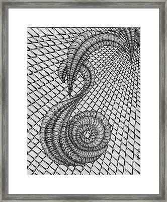 Shell Music Framed Print by Anca S