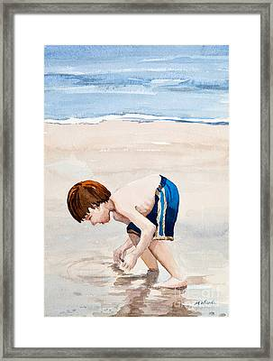 Shelling On The Cape Watercolor Framed Print by Michelle Wiarda