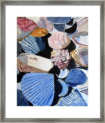 Shells At The Seashore Framed Print by Sandy McIntire