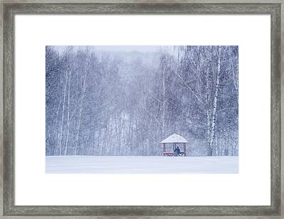 Shelter In The Storm - Featured 3 Framed Print by Alexander Senin
