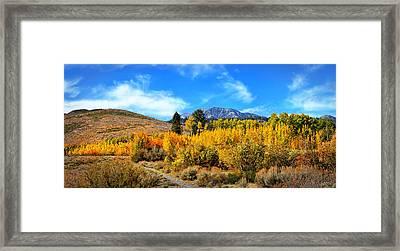 Sherwin Creek Panorama  Framed Print by Lynn Bauer