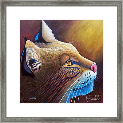 Shine Framed Print by Brian  Commerford