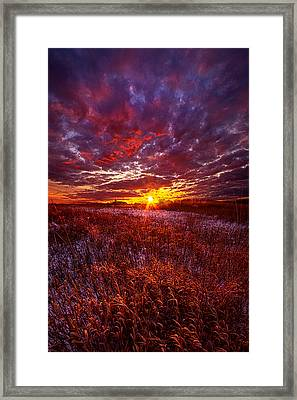 Shine Silently Framed Print by Phil Koch