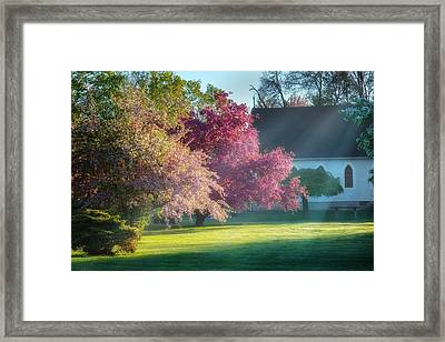 Shine The Light On Me Framed Print by Bill Wakeley