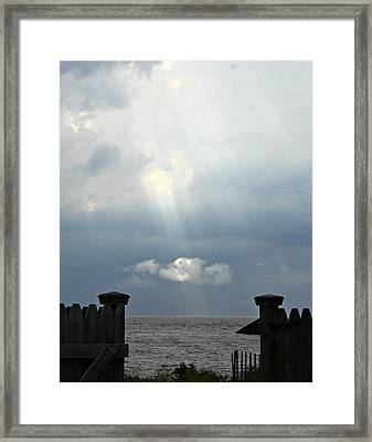 Shinedown Framed Print by Brenda Conrad
