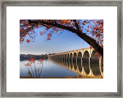 Shipoke In Autumn Framed Print by Lori Deiter