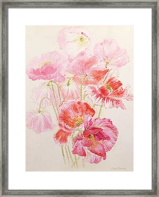 Shirley Poppies Framed Print by Joan Thewsey