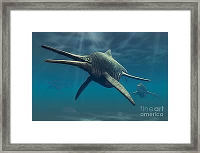 Shonisaurus Was A Genus Of Ichthyosaur Framed Print by Philip Brownlow