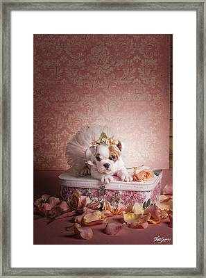 Show Time Framed Print by Lisa Jane