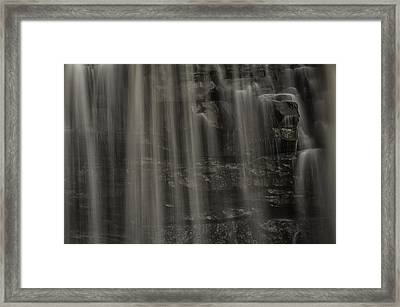 Shower Curtain Drapes Bear Roar Framed Print by Mark Serfass
