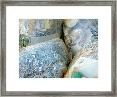 Shredded Documents Framed Print by Alex Bartel