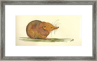 Shrew Framed Print by Juan  Bosco