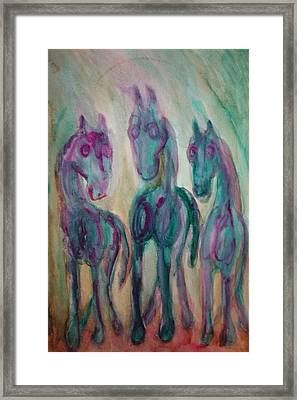 Green Horses Are Shy But Curious  Framed Print by Hilde Widerberg