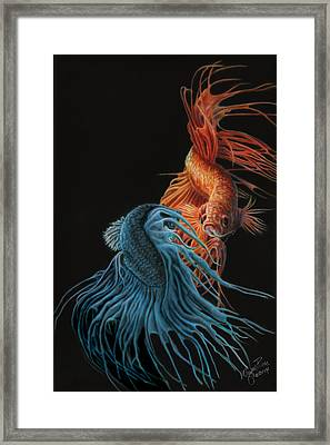 Siamese Fighting Fish Two Framed Print by Wayne Pruse