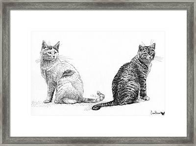 Siblings Framed Print by Cara Bevan