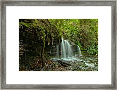 Side View At Mohawk Framed Print by Adam Jewell