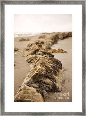 Side Winding Framed Print by Amanda Barcon