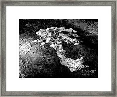 Sidewalk Skull Framed Print by Kelly Holm