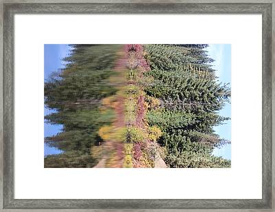 Sideways Fall Colors Kalideoscope Elk River Idaho Framed Print by Linda Meyer