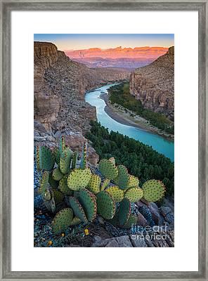 Sierra Del Carmen Framed Print by Inge Johnsson