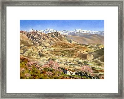 Sierra Nevada With Almond Blossom Framed Print by Margaret Merry