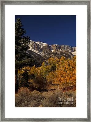Sierra Nevadas In Autumn Framed Print by Ron Sanford