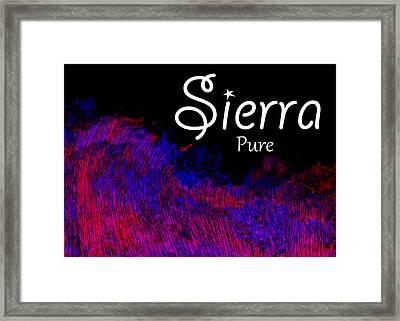 Sierra - Pure Framed Print by Christopher Gaston