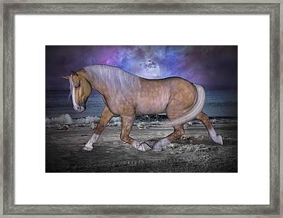 Siesta Moon Framed Print by Betsy C Knapp