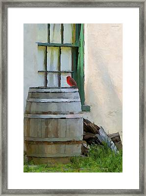 Signs Of Spring Framed Print by Ron Jones