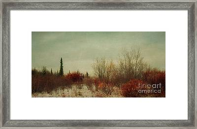 Signs Of Winter Framed Print by Priska Wettstein