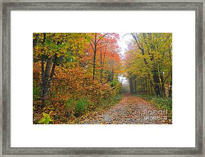 Silence  Framed Print by Catherine Reusch  Daley