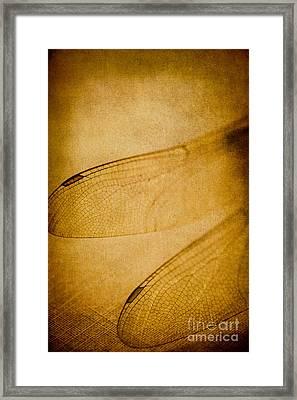 Silent Wings Framed Print by Jan Bickerton