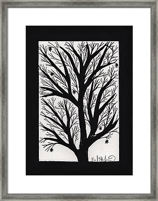 Silhouette Maple Framed Print by Barbara St Jean