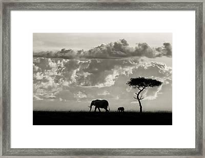 Silhouettes Of Mara Framed Print by Mario Moreno
