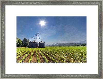 Silos Framed Print by Debra and Dave Vanderlaan