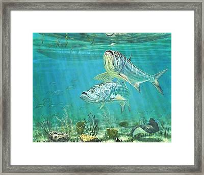 Silver And Gold Framed Print by Don  Ray