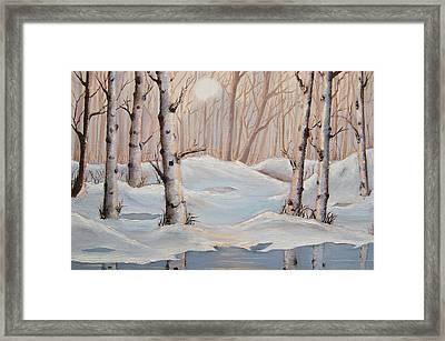 Silver Birch Framed Print by Misuk Jenkins
