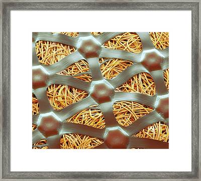 Silver Plaster Technology Framed Print by Steve Gschmeissner