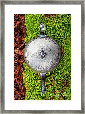 Silver Teapot In The Forest Framed Print by Edward Fielding