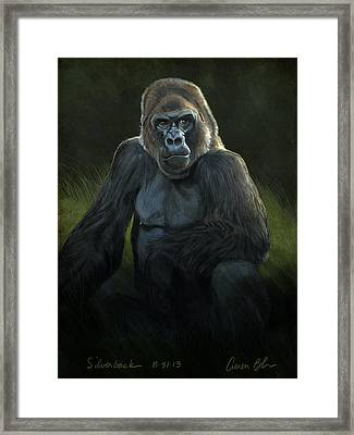 Silverback Framed Print by Aaron Blaise