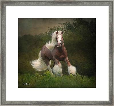 Simon And The Storm Framed Print by Fran J Scott