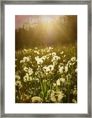 Simple Dreams Framed Print by JC Photography and Art