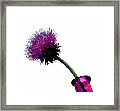 Simple Pleasure Framed Print by Krissy Katsimbras