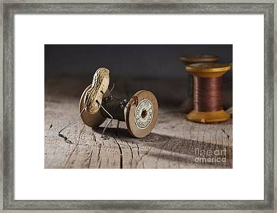 Simple Things - Rolling The Thread Framed Print by Nailia Schwarz