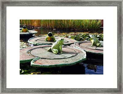 Singing Frogs Framed Print by Doc Braham