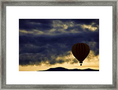 Single Ascension Framed Print by Carol Leigh