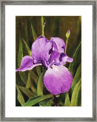 Single Iris Framed Print by Anastasiya Malakhova