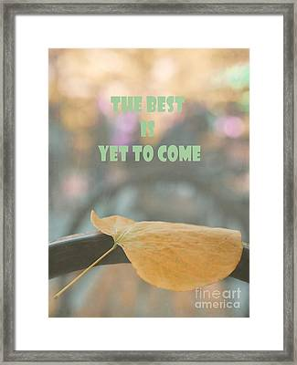 Single Leaf In The Park Framed Print by Irina Wardas